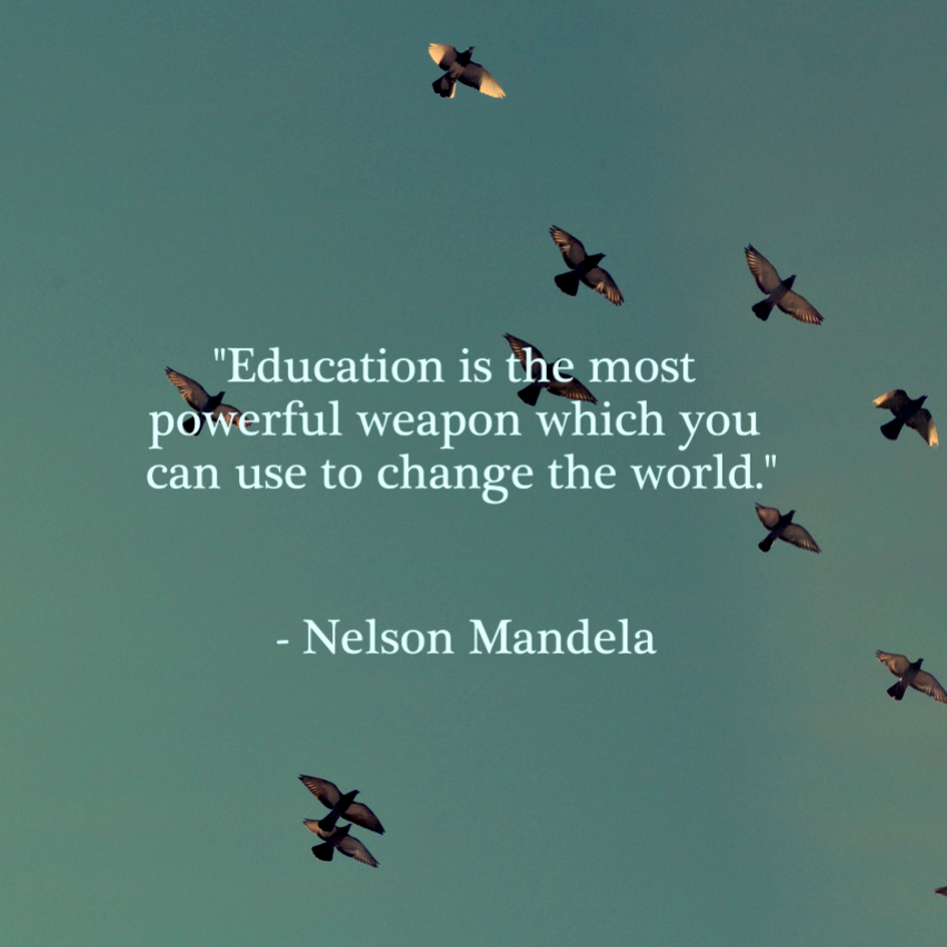 education as a weapon of change about springest blog education politics